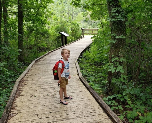 Mammoth-Cave-National-Park-Accessible-Trail